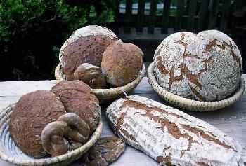 Ofenfrisches Bauernbrot - Urlaub auf dem Bauernhof im Bayerischen Wald mit Brot backen