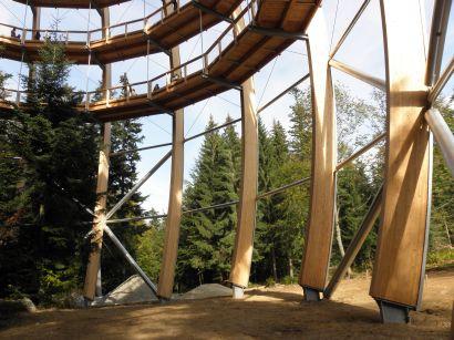 baumkronenpfad-nationalpark-holzkonstruktion-stelzen-410