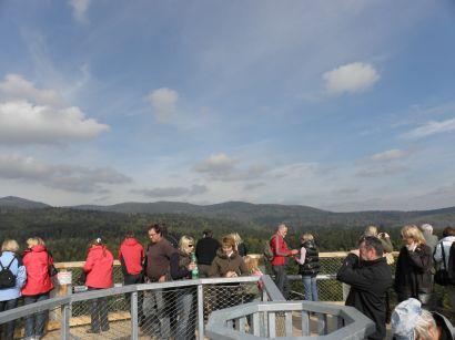 baumwipfel-pfad-neuschoenau-aussichtspunkt-nationalpark-berge-kuppel-plattform-410