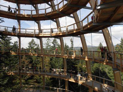 baumwipfelpfad-deutschland-nationalpark-wendelweg-kuppel-410