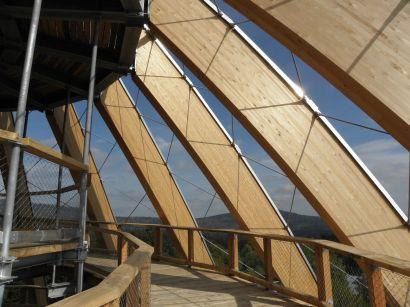 baumwipfelpfad-nationalpark-holzkonstruktion-aussichtsplattform-410