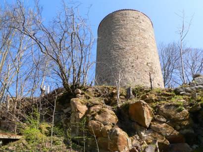 Burgruinen in der Oberpfalz Burg Ruine Thannstein