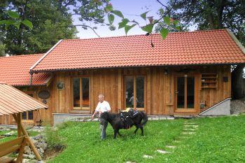 ferienhaus-mit-ponyreiten-deutschland-reiterferien