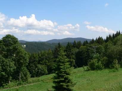finsterau-ausflugsziele-bayerischer-wald-wiesen-wälder