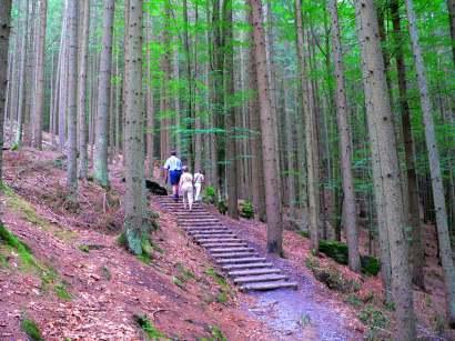 frauenau-trinkwassertalsperre-ausflugsziele-wanderung-bayerwald