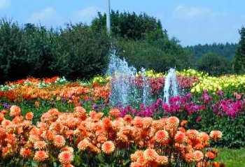 Blumenpark Bayern Bayerischer Wald