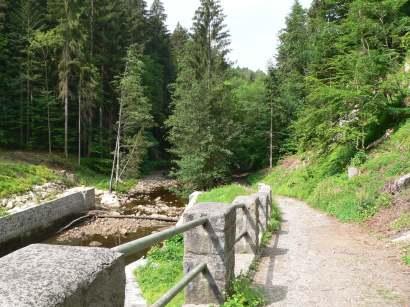 freyung-wildbachklamm-natur-wanderungen-buchberger-leite
