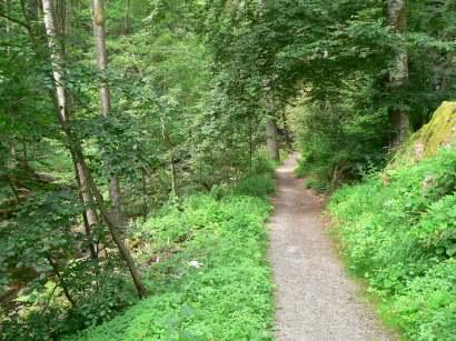 freyung-wildbachklamm-wanderwege-bayerwald-buchberger-leite
