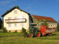 Gasthof bei Schönsee, Oberviechtach, Rötz und Waldmünchen