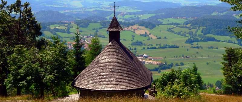 Bayerwald Berg Haidel - Haidel Aussichtsturm in der Haidelregion