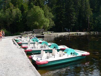 Bootsverleih und Bootfahren am Arbersee