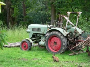 Selbstversorger Hütten im Bayerischen Wald - Bild ID: gruber-ferienhütten-bayerischer-wald-traktor-besichtigen