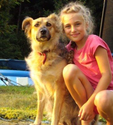 hofmann-ferienwohnung-hundefreundliches-ferienhaus