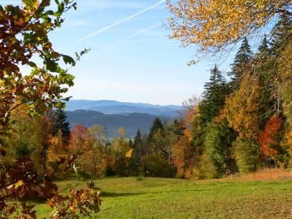 Herbst Wanderung am Kaitersberg Bad Kötzting Bayern Bayerischer Wald