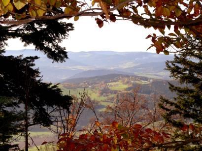 kaitersberg-kötzting-bayerwald-wanderurlaub-berg-ausblick-wald
