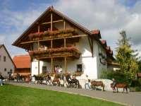 Reiterferien für Kinder - Reiterferien im Bayerwald in Süd-Deutschland Reiterpension