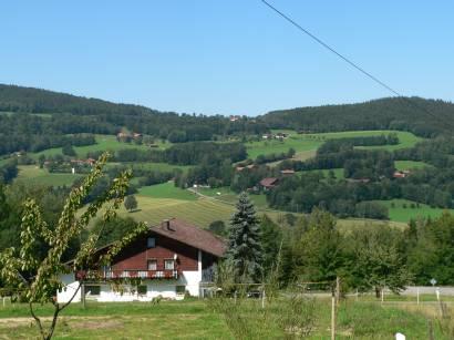 kollnburg-bayerischer-wald-landschaft-natur-urlaub