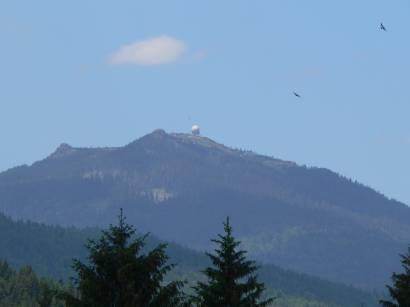 ludwigsthal-bayerischer-wald-bayerwald-berg-arber-blick