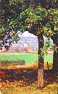 Obstlehrpfad in der Oberpfalz