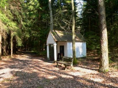 neunburg-vorm-wald-warberg-wandergebiet-wanderwege