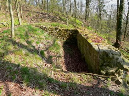 neunburg-vorm-wald-warburg-burgruine-mauerreste