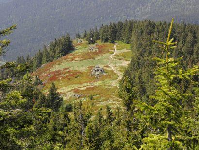 die Osserwiese am Bergrücken vom Bayerwald Berg Osser