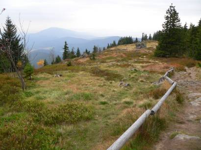 Osserwiese auf dem Berg Osser