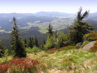 osser-bergwandern-bayern-wanderurlaub-natur-umwelt