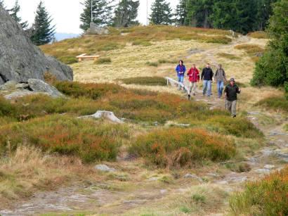Bergwandern aufm Osser über die Osserwiese