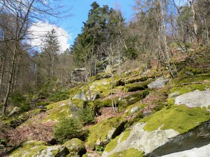rötz-schwarzwihrberg-oberpfalz-wandern-landkreis-schwandorf