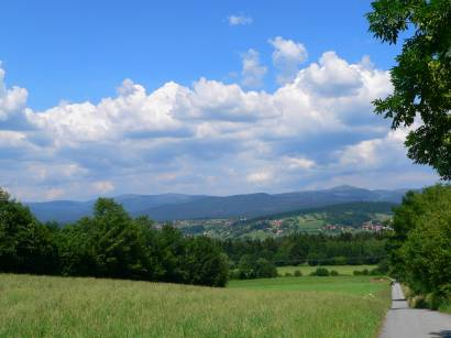 saldenau-bayerischer-wald-ferienort-landschaft-bayerwald-wanderurlaub