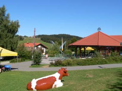 sankt-englmar-bayerischer-wald-ausflugsziel-freizeit-sommer-rodelbahn