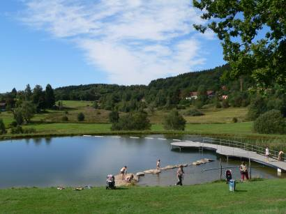 Freizeittipps Sankt Englmar - Bild ID: bayerischer-wald-ausflugsziel-naturbadeweiher-badesee