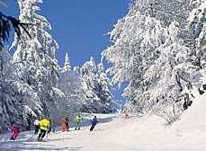 Winterurlaub nähe Sankt Englmar Bauernhofurlaub