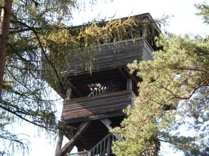Der Aussichtsturm bei Furn ist ca 27 m hoch, gebaut in Holzbauweise