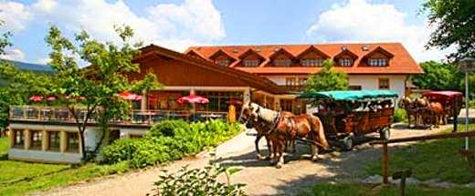 Hotels In Lohberg Deutschland