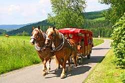 Urlaub im Lamer Winkel - Hotel Schwarzeck