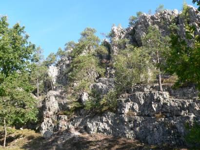 viechtach-naturschutzgebiet-grosser-pfahl-bayerischer-wald-gestein-wandern