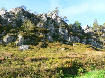 viechtach-naturschutzgebiet-grosser-pfahl-bayerischer-wald