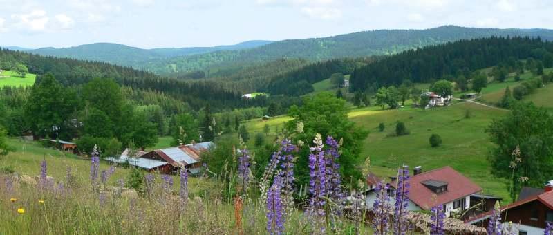 vorderfirmiansreut-ausflugsziel-sehenswertes-natururlaub-wanderferien-panorama