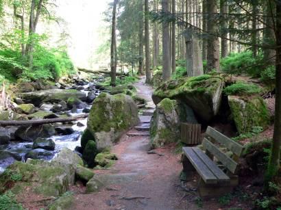 waldkirchen-saussbachklamm-naturschutzgebiet-klamm-felsen