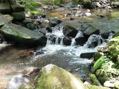waldkirchen-saussbachklamm-wandergebiet-natur-bachlauf