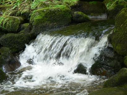 waldkirchen-saussbachklamm-wandergebiet-natururlaub-wasserfall-bach