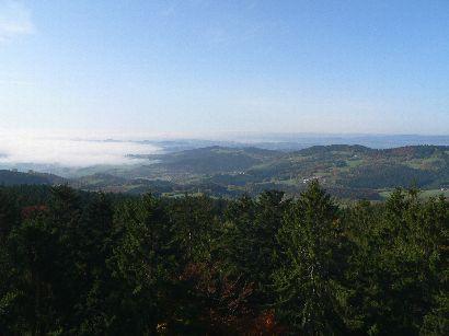 waldwipfelweg-maibrunn-aussichtspunkt-landschaft-nebel-410