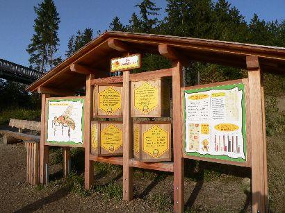 waldwipfelweg-naturlehrpfad-kinder-familien-freizeittipp-410