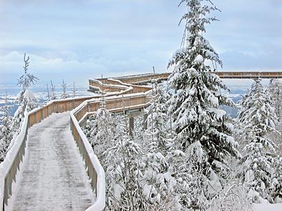verschneiter Waldwipfelweg Weihnachtsmärkte im Bayerischen Wald