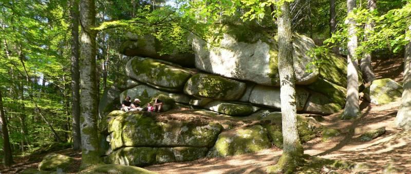 wandergebiet-höllbachtal-bayern-wanderurlaub-panorama-800