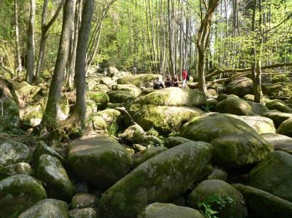 wandergebiet-höllbachtal-brennberg-landkreis-cham