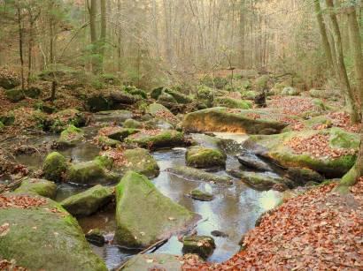 wandergebiet-höllbachtal-herbsturlaub-wanderurlaub-bayern