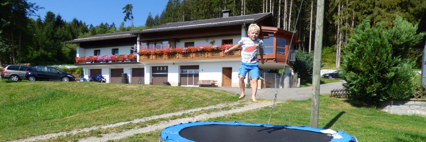 achatz-ferienhaus-bayerischer-wald-natururlaub-ansicht